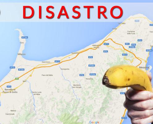 seo-disastro